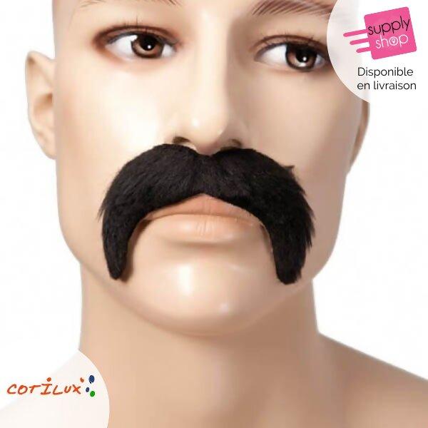 fausse moustache déguisement cotilux