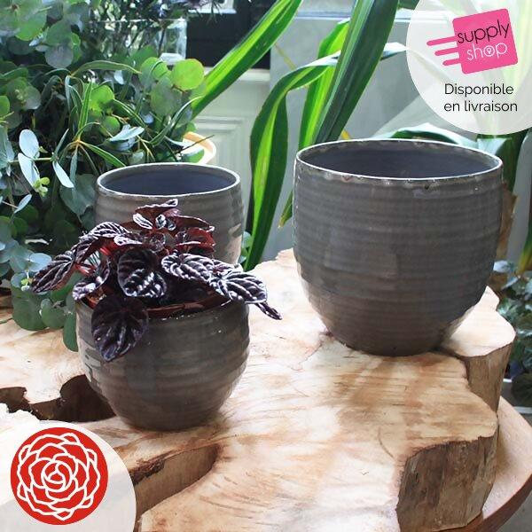 cache pot vernis gris rouge pivoine fleuriste caen