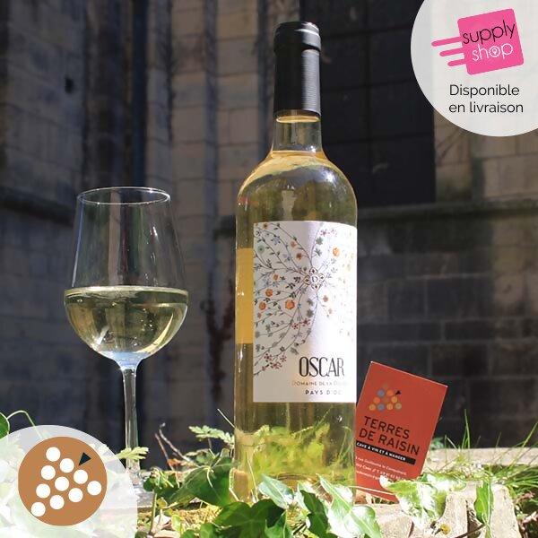 vin blanc domaine de la boubh pays d'oc caviste terres de raisin 1