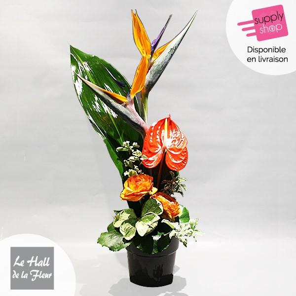 composition-hauteur-exotique-hall-de-la-fleur