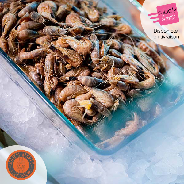 crevettes grises julien marée