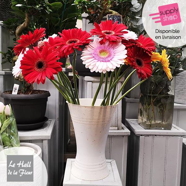 bouquet gerbera hall de la fleur