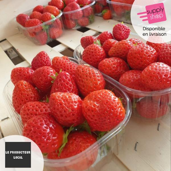 Barquette de fraises 250g Le Producteur Local